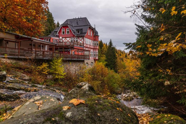 Steinerne Renne Harz herbst