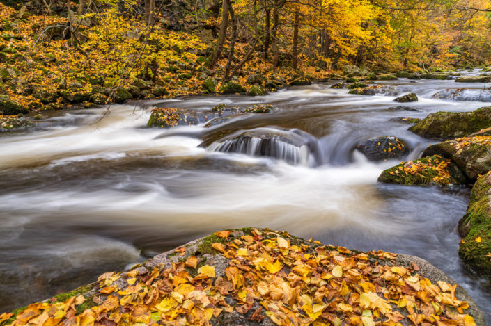 Harz Bodetal Herbst