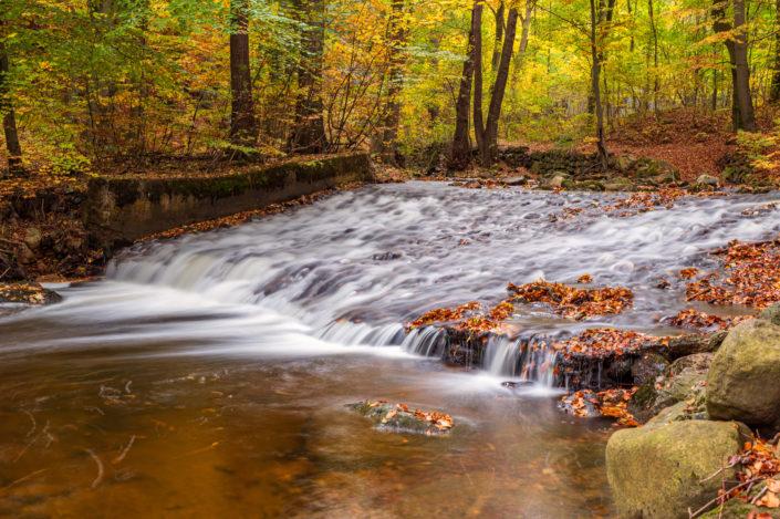 Ilsetal Herbst Harz
