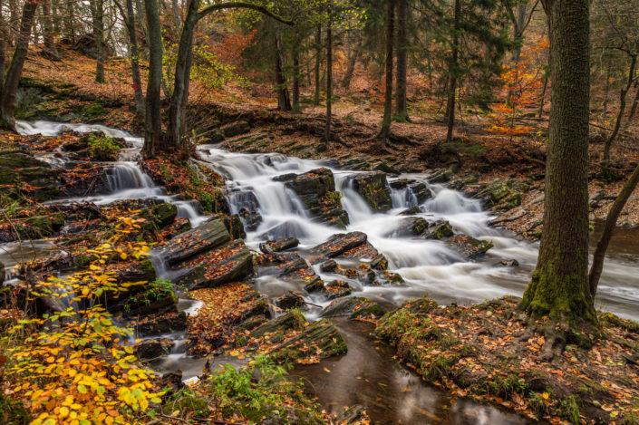 Selkefall Harz Herbst