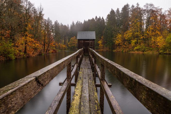 Steg im Harz